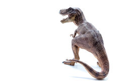 Brown Dinosaur Tyrannosaurus Rex side view - white background Royalty Free Stock Photo