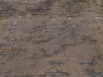 Brown Dirty Muddy Texture Background Royalty Free Stock Image