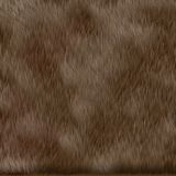 Brown dog fur texture. Large background texture Stock Image
