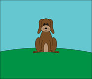 Brown dog on a hill  Royalty Free Stock Photo