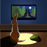 Brown dog howling watches TV back view Vector illustration stock photography