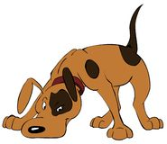 The brown dog searches for a trace. The ridiculous spotty dog searches for something, animation, the character Royalty Free Stock Images