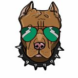 Brown dog and sunglasses drawing. Brown dog and sunglasses  drawing and white background Royalty Free Stock Images
