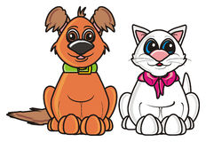 Brown dog and white cat Royalty Free Stock Image