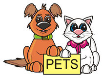 Brown dog and white cat with a sign pets Stock Photos