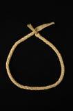 Brown a donné au collier une consistance rugueuse en cuir tressé Photos libres de droits