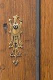 Brown_door_golden_key_ornament-1 库存图片