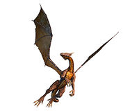 Brown dragon flying and hunting. Very nice pose Royalty Free Stock Photos