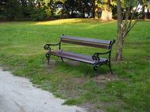 Brown drewniana ławka w parku romantyczna sceneria obraz royalty free