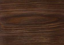 Brown drewniana deska lacquered Zdjęcie Royalty Free