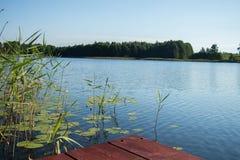 brown drewniana deska przeciw niebieskiemu niebu, woda, zieleni płochy i las i obrazy stock