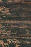 Brown drewniana tekstura, zamyka up drewniana ściana backgroun abstrakcyjne Zdjęcia Royalty Free
