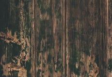 Brown drewniana tekstura, zamyka up drewniana ściana backgroun abstrakcyjne Fotografia Stock