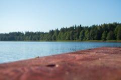 brown drewniane deski przeciw niebieskiemu niebu, woda, zieleni płochy i las i fotografia royalty free