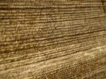 Brown drewno Fotografia Stock