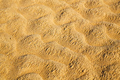 Brown dry sand    desert Stock Image
