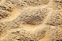 Brown dry sand in sahara Royalty Free Stock Image