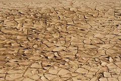 Brown, dryness and arid ground Stock Images