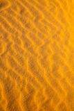 brown dune in the sahara  desert Stock Photography