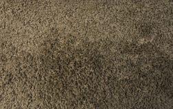 Brown dywan obrazy royalty free