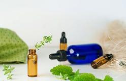 Brown e bottiglie blu di olio essenziale con la menta fresca e il thym immagine stock