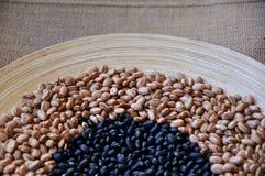 Brown e feijões pretos Imagens de Stock Royalty Free