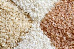 Brown e fondo del riso bianco immagine stock