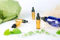 Brown e garrafas azuis do óleo essencial com hortelã fresca e thym Fotografia de Stock