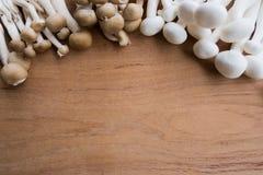Brown e o shimeji branco crescem rapidamente na tabela com espaço vazio na parte superior média da tabela de madeira imagens de stock royalty free