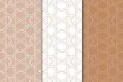 Brown e ornamento geométricos brancos Jogo de testes padrões sem emenda Imagem de Stock Royalty Free