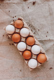 Brown e ovos da páscoa brancos Imagem de Stock Royalty Free