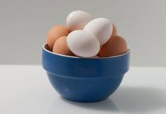 Brown e ovos molhados brancos em uma bacia azul e branca Foto de Stock Royalty Free