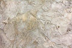 Brown e textura branca do fundo da parede Imagens de Stock Royalty Free