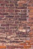 Brown e textura resistida colorida oxidação do tijolo do Grunge imagens de stock royalty free