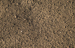 Brown earth and gravel macro texture Royalty Free Stock Photography