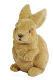 Brown Easter Bunny. Easter bunny on white background stock photos