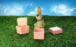 Brown Easter Bunny with pink gift box Stock Images