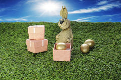 Brown Easter Bunny with pink gift box Royalty Free Stock Image