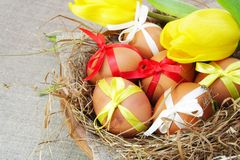 Brown Easter Chicken Eggs with Ribbons in Nest Royalty Free Stock Images