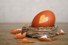 Brown Easter egg in nest Stock Photos