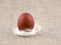 Brown easter eggs in nest on linen background Royalty Free Stock Image