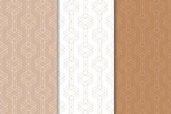 Brown ed ornamenti geometrici bianchi Insieme dei reticoli senza giunte Fotografie Stock Libere da Diritti