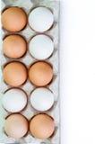 Brown ed uovo bianco Immagine Stock Libera da Diritti
