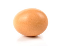 Brown egg Stock Photos