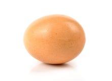Brown egg. On white background Stock Photos