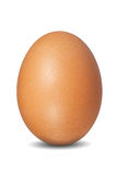 Brown egg. Isolated on white background Royalty Free Stock Photo