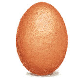 Brown-egg Royalty Free Stock Image