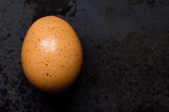 Brown egg on black background Royalty Free Stock Photos