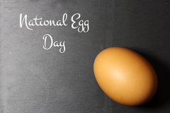 Brown egg on black Royalty Free Stock Images