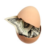 Brown egg with dollar banknote Stock Photography